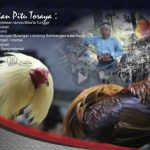 TARIAN PITU – Tujuh bentuk Peradilan Toraja Di Masa Lalu.