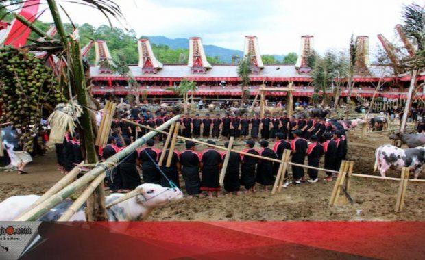 Ritual Rambu solo' di Toraja
